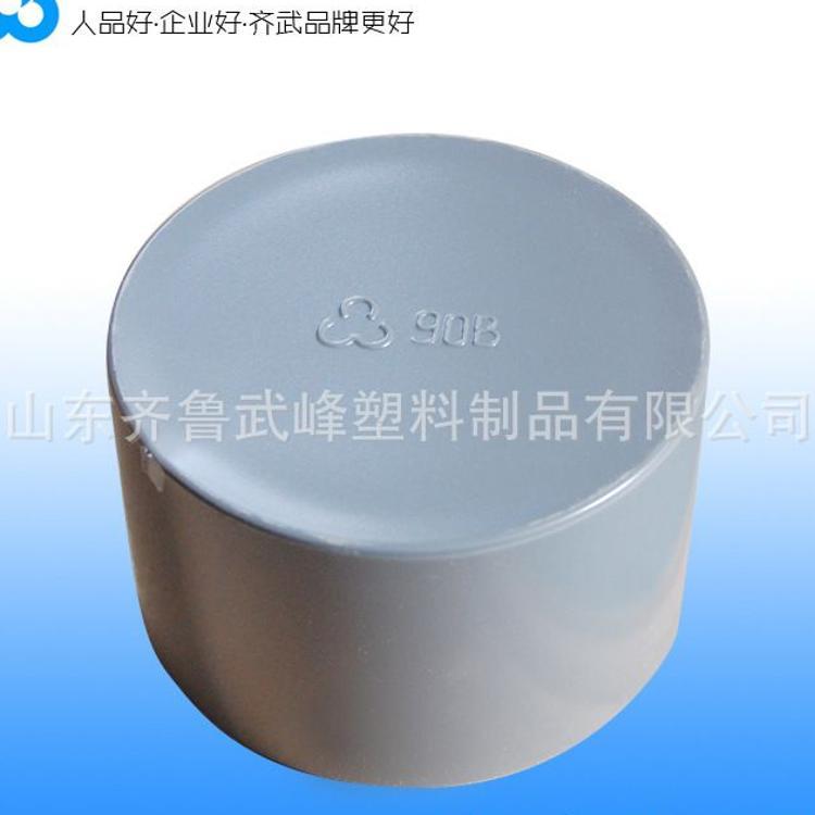 山東PVC管帽 現貨供應 PVC管 大口徑PVC管封頭 UPVC各規格管堵