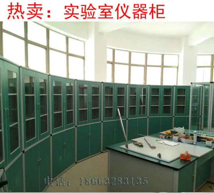 标本柜教学仪器柜 标本柜 药品柜玻璃仪器设备 实验室耗材设备