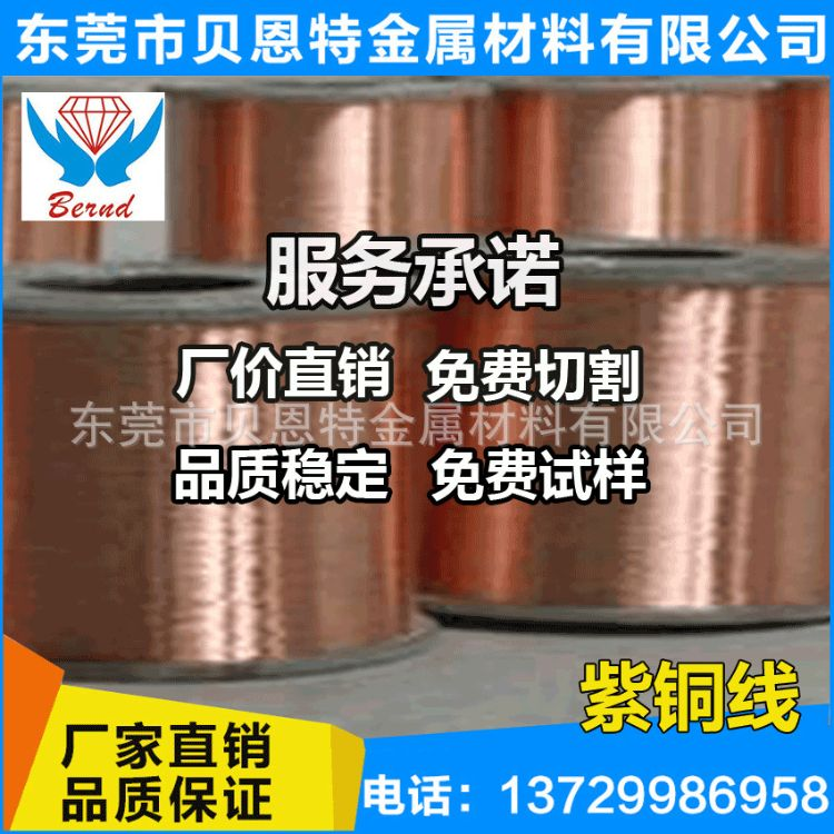导电紫铜线-C1100紫铜线 镀镍紫铜线 耐腐蚀紫铜线厂家现货供应