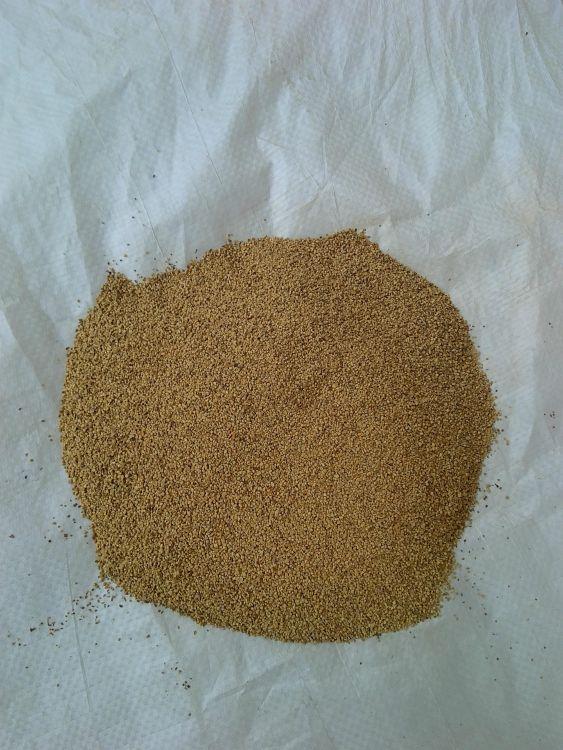 大量供应核桃壳-核桃壳滤料-核桃壳粉
