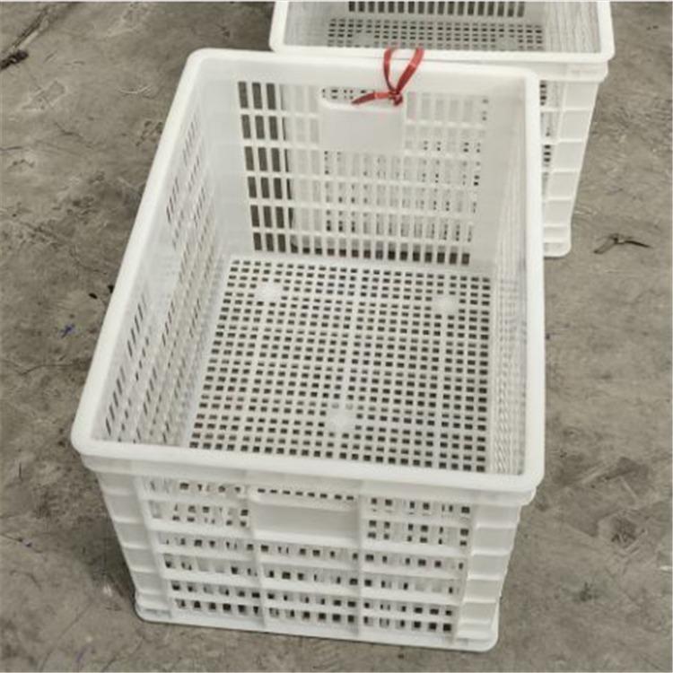 貴州貴陽塑料筐廠家
