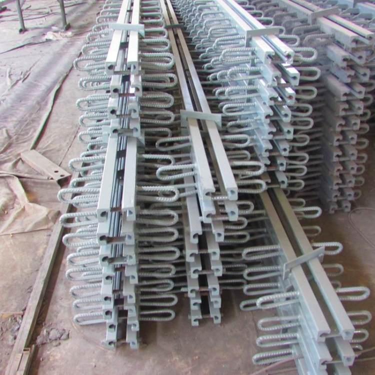 國亨生產橋梁伸縮縫 GQF80型模數式橋梁伸縮裝置 運輸倉儲中心伸縮縫