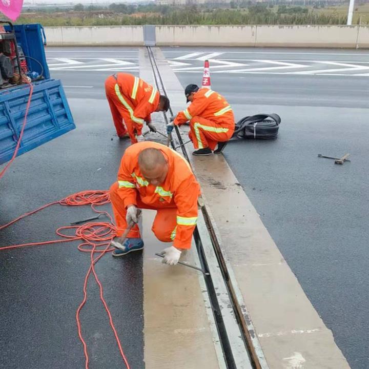 青海模數式80型伸縮縫更換 更換填充式公路橋梁伸縮縫 木子用心服務