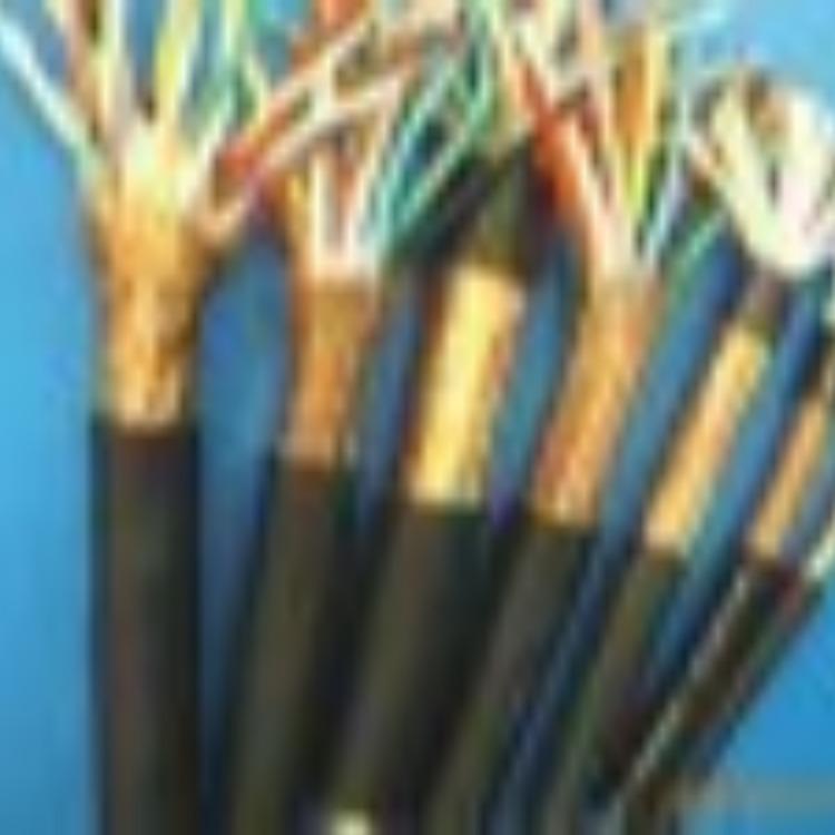 供應天康RVVP系列計算機電纜