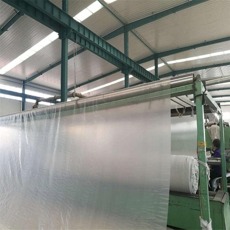塑料土工膜生產廠家 湛江蓄水池塑料土工膜