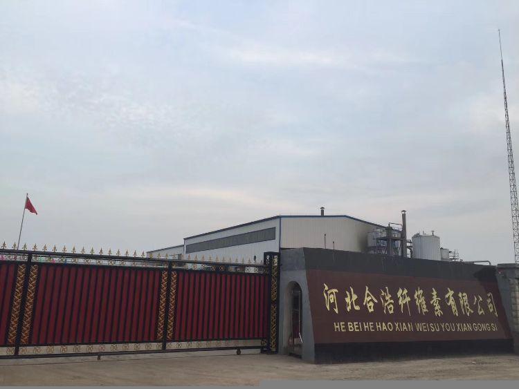 批发直销 高粘度羟丙基甲基纤维素 专业生产纤维素醚 应用广泛
