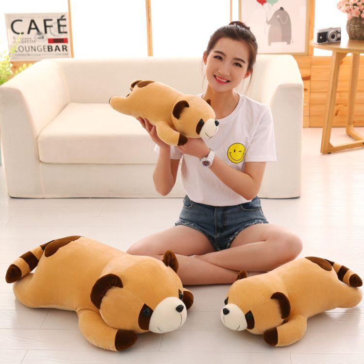 厂家直销爆款软体毛绒玩具浣熊羽绒棉熊抱枕睡枕四面弹生日礼品