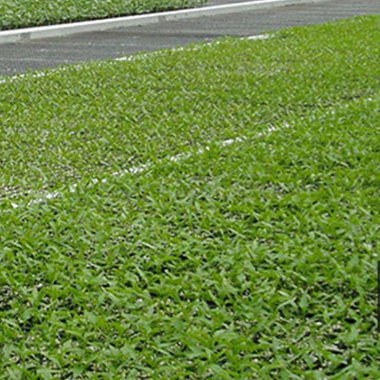【苗床】厂家批发现货移动苗床加工定做温室大棚育苗床苗圃