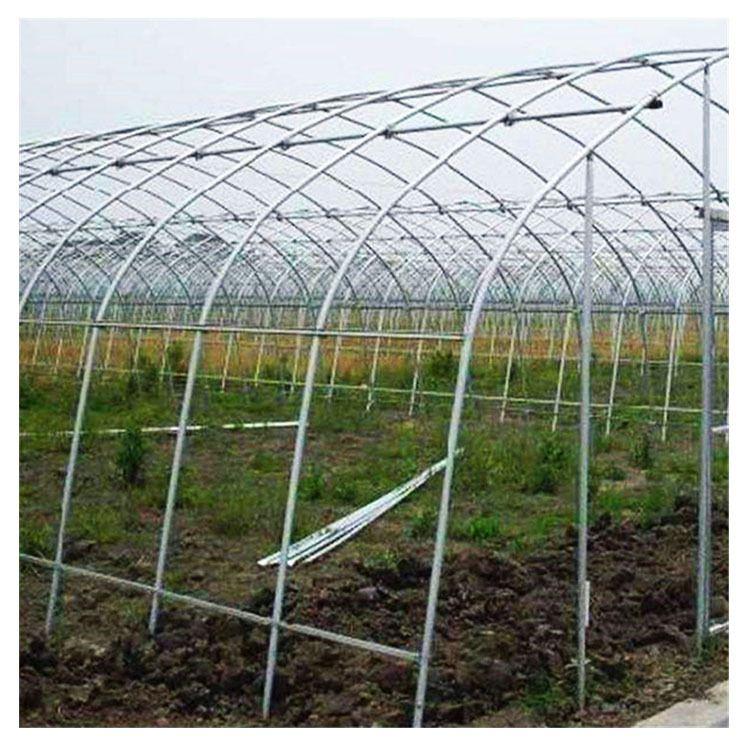 简易蔬菜大棚  玻璃温室连栋大棚 钢架大棚 温室大棚材料现货拱应