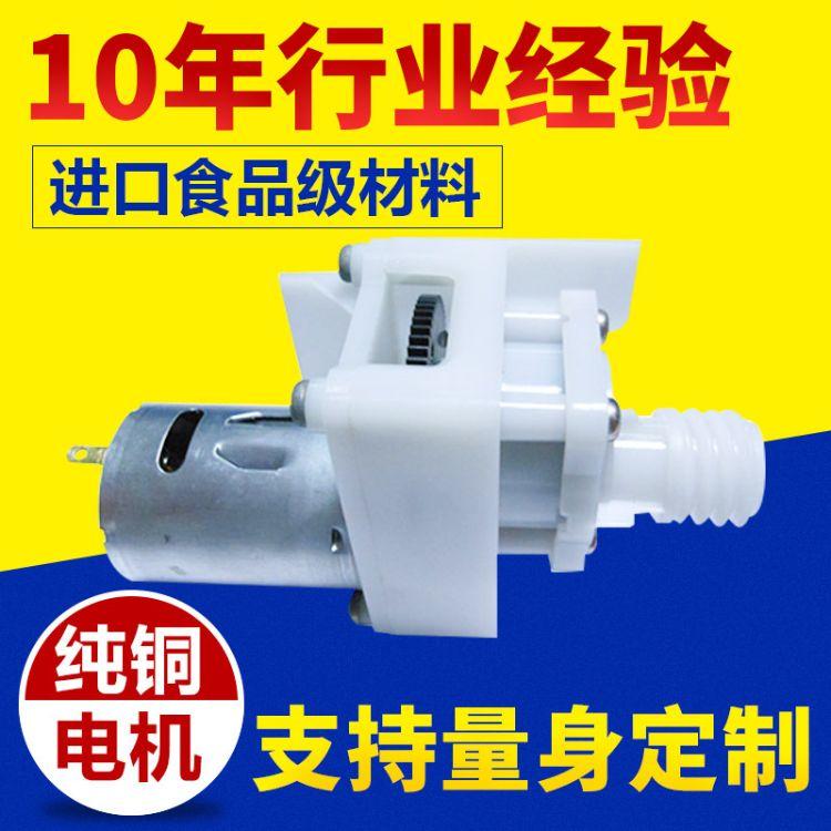 纯铜电机自吸增压小水泵 电动高压微型齿轮泵 小型精密双向齿轮泵