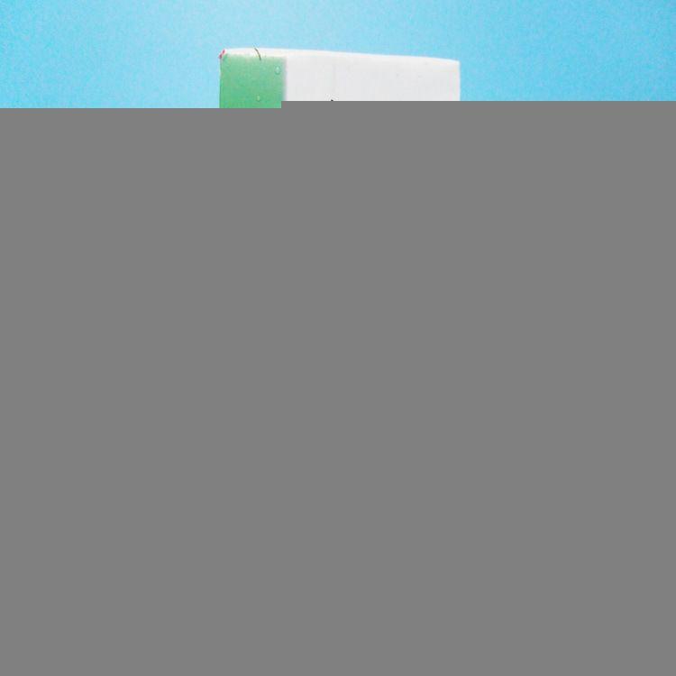 德国原装菲仕利动物性酸奶油24%烘焙原料蛋糕裱花1L