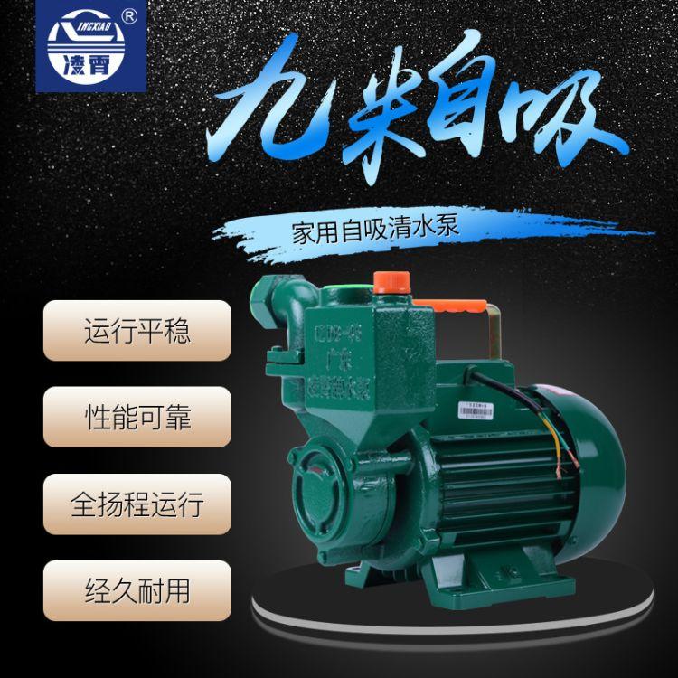 凌霄清水泵家用 220V高扬程农用高压泵抽水机 自吸泵井水抽水泵ZDB