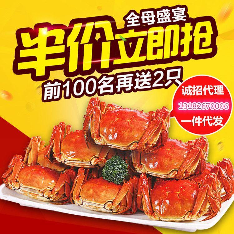 经济实惠阳澄湖大闸蟹全母蟹中秋国庆鲜活大螃蟹团购2.1-2.5两