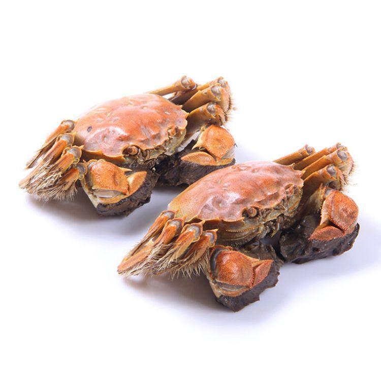 产地直供大闸蟹 8只3.5两公2.5两母礼盒装 企业定制 微商一件代发