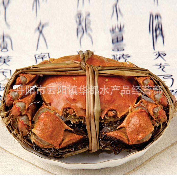 规格齐全 大闸蟹鲜活水产品 兴化大闸蟹人工养殖大闸蟹