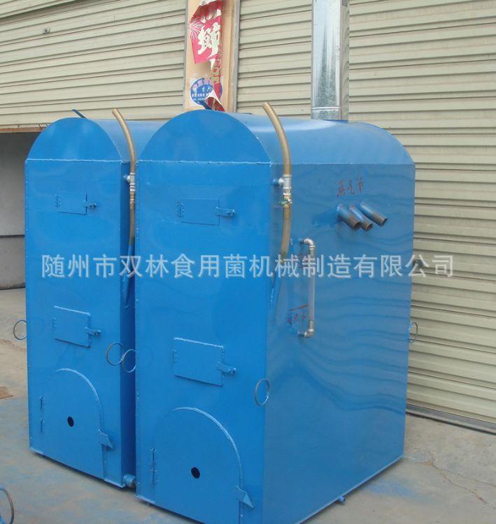 厂家直销 食用菌卧式节能常压灭菌锅炉 加水不掉气