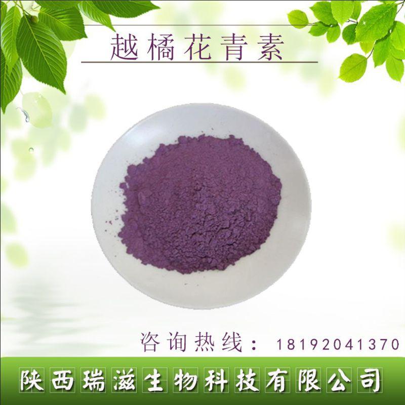 越橘提取物 原花青素含量25% 蓝莓提取物 品质保证 蓝莓花青素25%