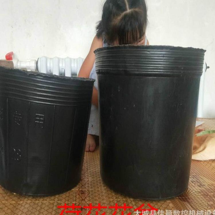 塑料加厚育苗杯荷花专用营养杯 无孔营养杯荷花营养杯水培植物