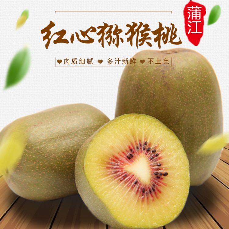 蒲江 红心猕猴桃 奇异果 新鲜水果 果园直供 批发 一件代发