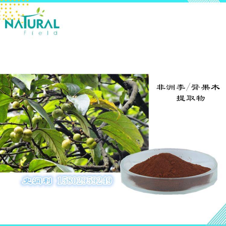 天丰供应 天然植物提取 含植物甾醇2.5% 非洲李提取物