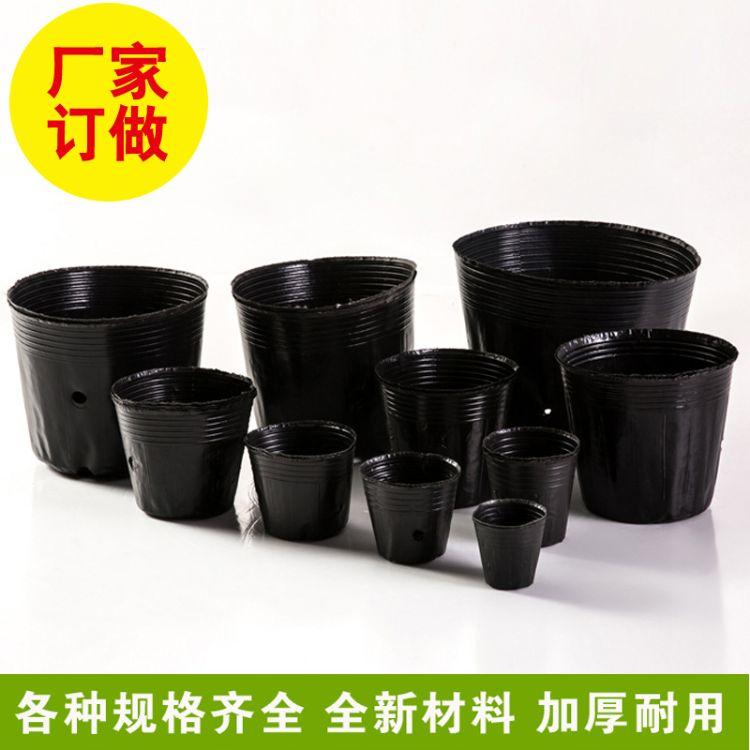 厂家直销塑料营养钵 防老化营养钵 加厚营养杯育苗杯 优质营养杯