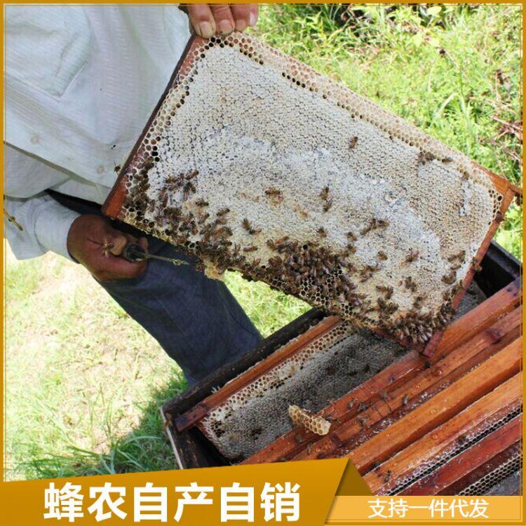 2018年成熟老巢脾 蜂农老蜂巢蜜 全封盖老巢蜜 蜂蜜