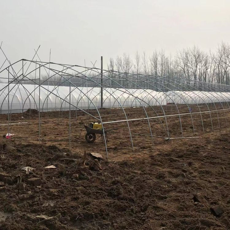 625825型大棚架蔬菜大棚骨架温室大棚 钢管钢架养殖塑料大棚批发