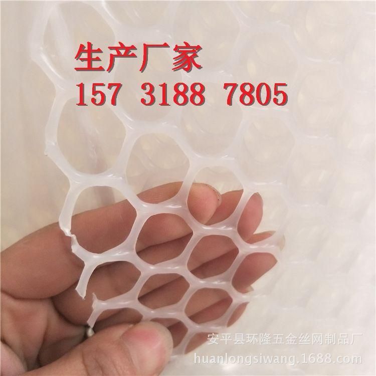 a级现货供应白色小孔养鸡网 包头塑料养殖网 包头塑料平网批发