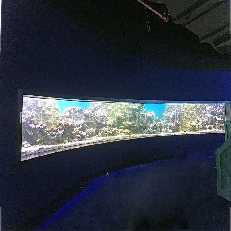 大型亚克力水族馆,生态鱼缸定做,海洋馆 ,亚克力视窗工程