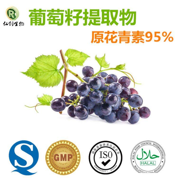 95%原花青素 提取物厂家供应优质 葡萄籽提取物
