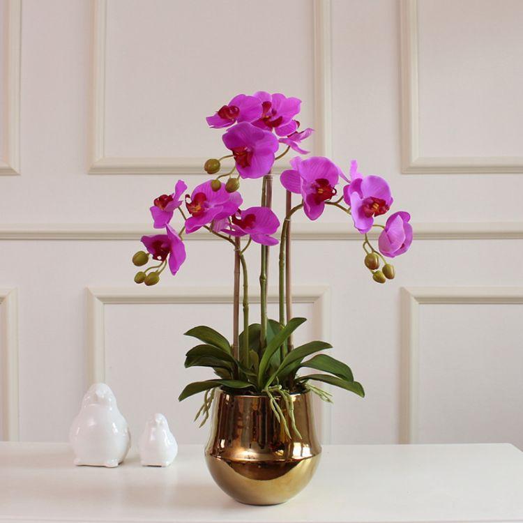 植物摆件手感蝴蝶兰仿真花套装金色花瓶客厅装饰假花摆件盆栽北欧