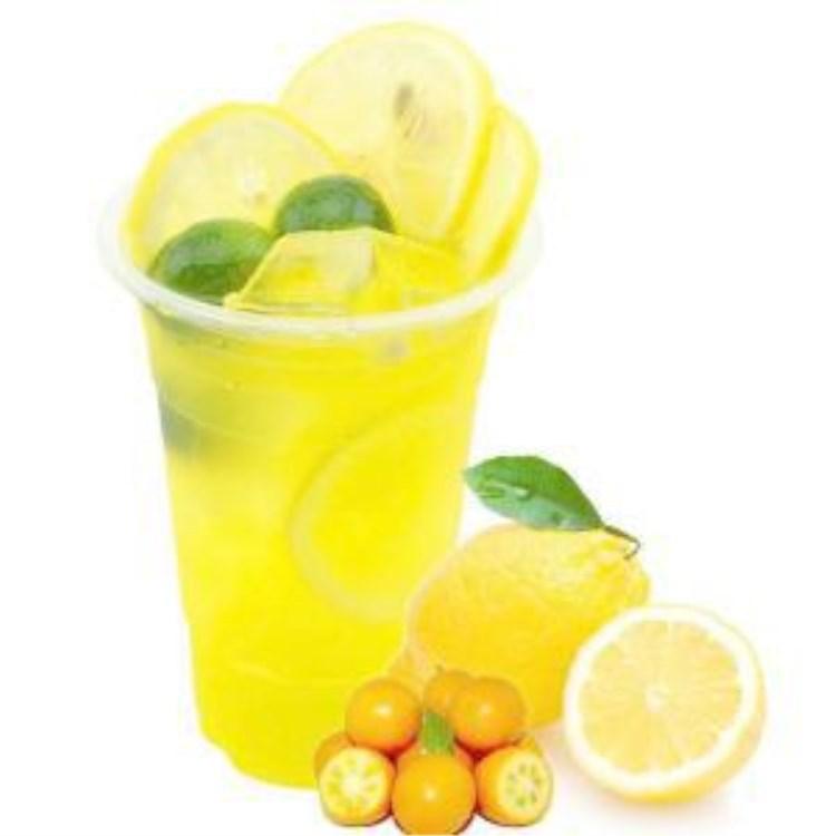 厂家直销新品果蜜柠檬水伴侣鲜果伴侣调味糖浆柠檬水伴侣现货批发