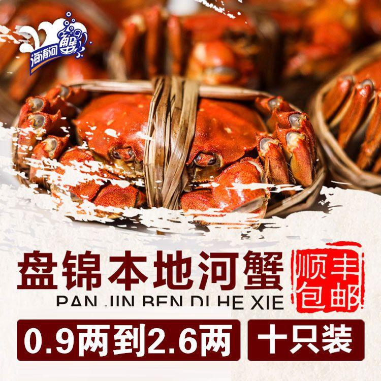 厂家批发河蟹 盘锦鲜活肥美河蟹养殖 东北特产鲜活大闸蟹批发