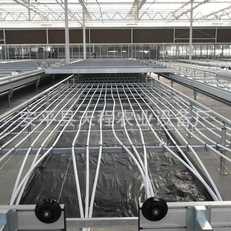 出售铁丝固定苗床网片铁丝苗床网片冷热镀锌苗床网牢固耐用易操作