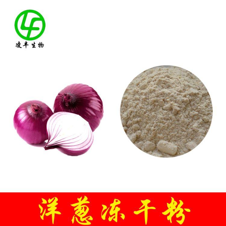洋葱冻干粉 洋葱提取物 现货 洋葱粉 优惠销售 欢迎订购