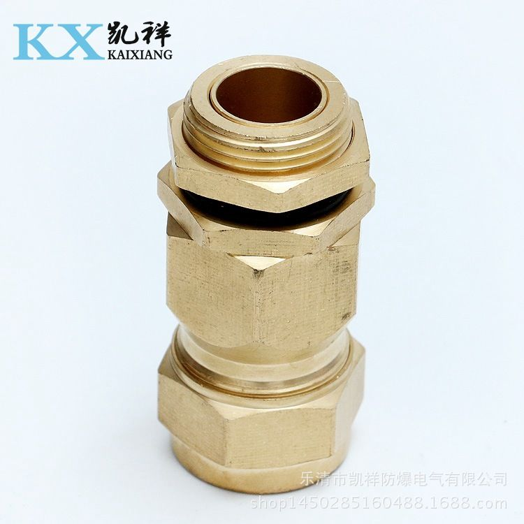 供应优质可定做防爆管件填料函 铠装电缆黄铜格兰头批发