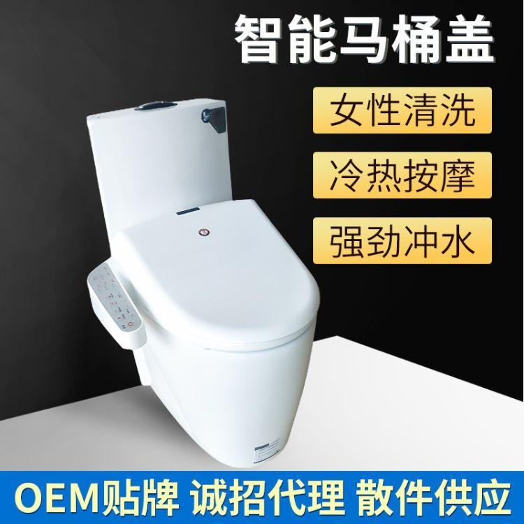 厂家供应RT-609智能马桶盖配遥控器加热冲洗烘干马桶盖子自动除臭