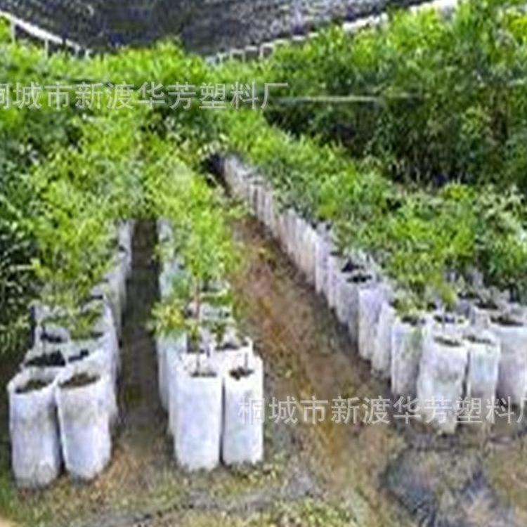 加工 定制 各种型号 无纺布育苗袋 容器袋 营养袋 美植袋