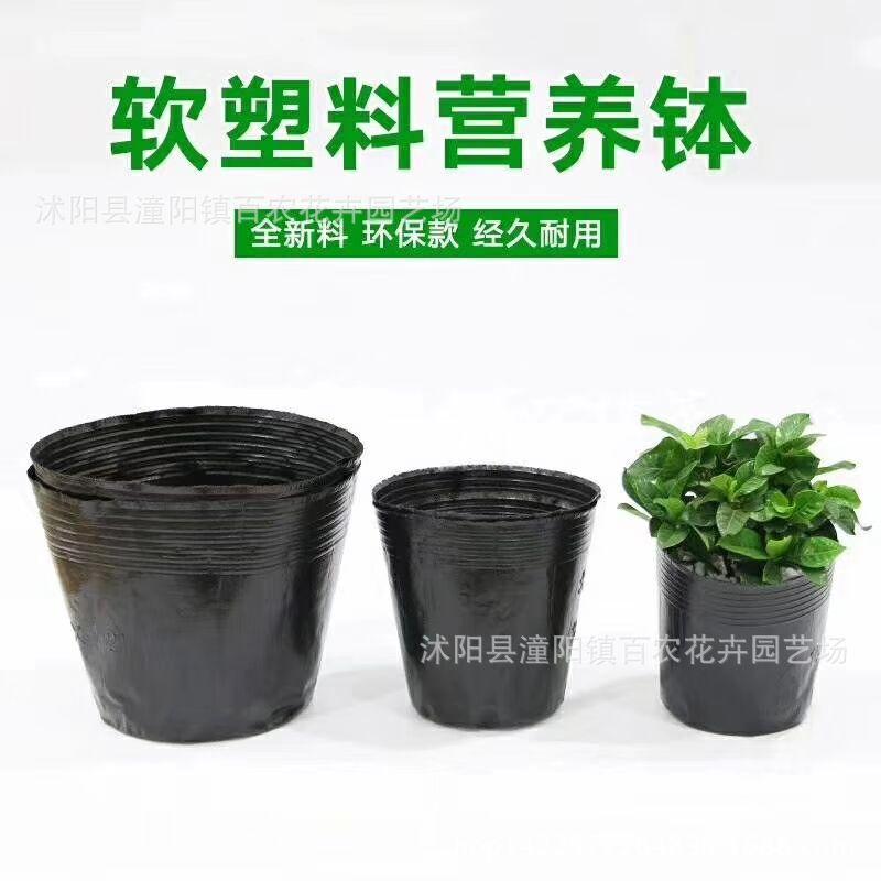批发 育苗袋 营养钵 黑色营养袋 营养杯  替代花盆 规格齐全
