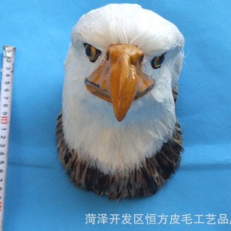 仿真老鹰 仿真动物鹰 鹰标本  创意 婴教玩具动物类别识别玩具 小