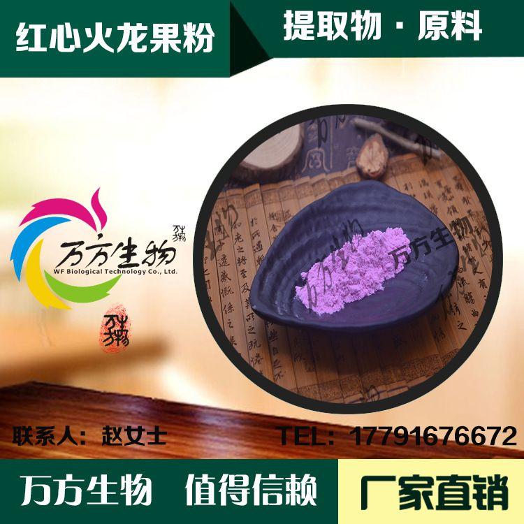 火龙果果粉99%  红心火龙果果汁粉 做固体饮料 火龙果浓缩粉批发