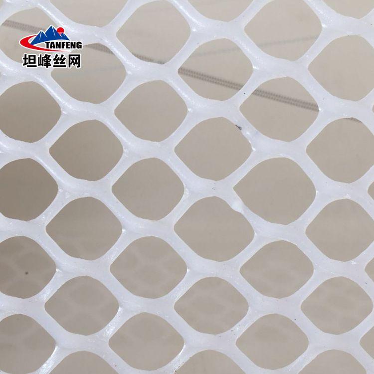 坦峰丝网塑料平网 塑料养殖网 养殖防护网 阳台防护网 优质供应商