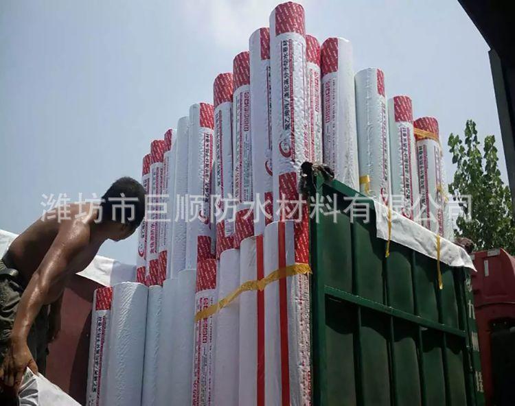 厂家直销 聚乙烯丙纶高分子防水卷材 仿300克 复合防水卷材