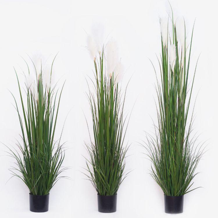 仿真芦苇盆栽仿真狗尾巴芦苇晴天草室内装饰绿植盆栽仿真植物