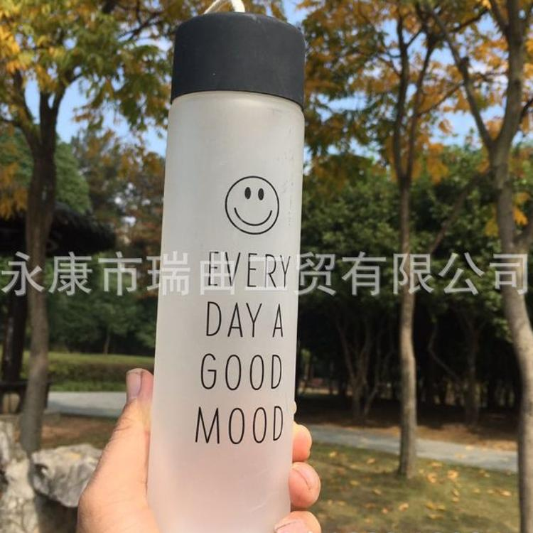 厂家直销礼品定制原宿玻璃杯便携玻璃水杯柠檬花茶杯玻璃水瓶