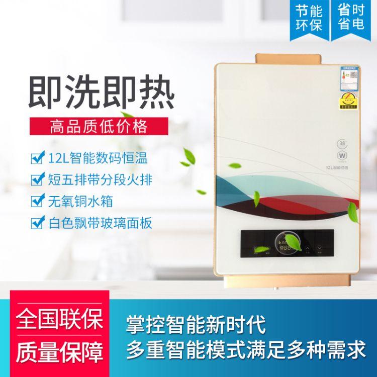 供应批发型号5856家用燃气热水器 智能恒温即热式热水器 质优价廉