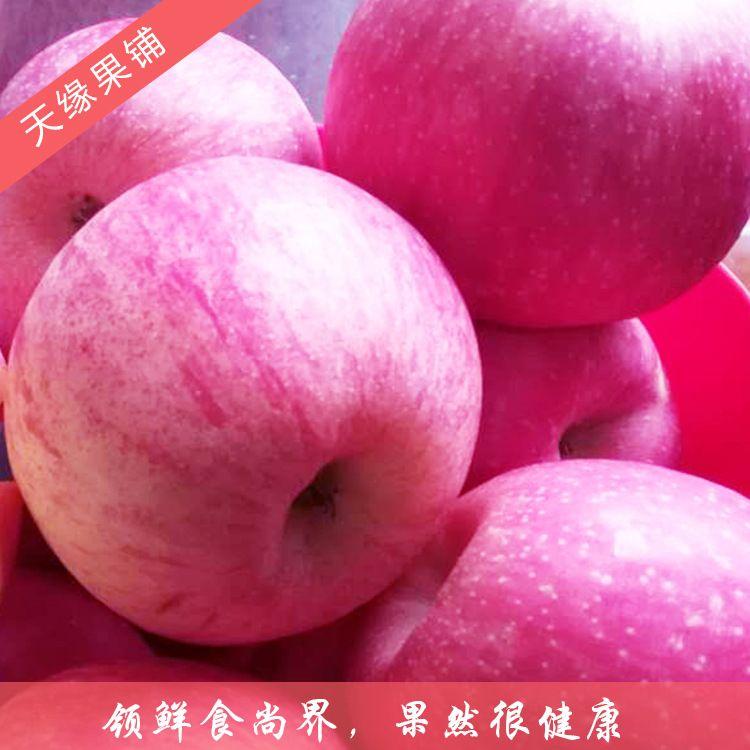 万荣新鲜水果苹果产地直销 苹果脆甜多汁 大量批发红富士苹果