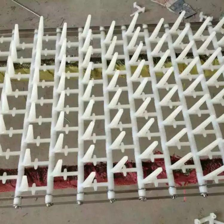 厂家直销洗碗机网带 塑料输送网带 餐盘清洗机网带可定制