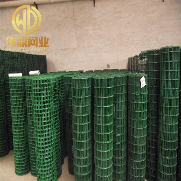 厂家直销 浸塑生态鸡鸭养殖荷兰网 养殖包塑铁丝网护栏 铁筛网