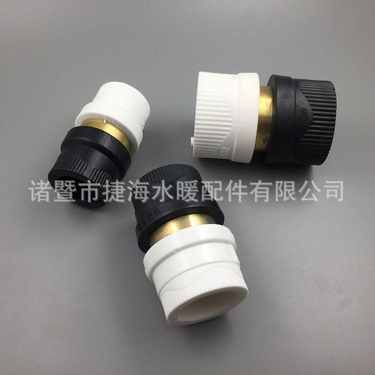 PPR管PE管转换接头4分6分1寸 PPRPE塑料管材转接头 水管变换接